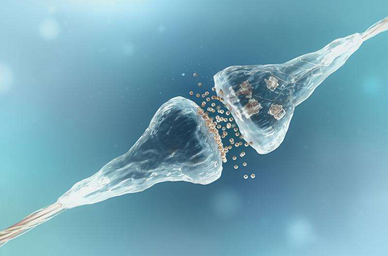 Conversion of brain cells offers hope for Parkinson's patients
