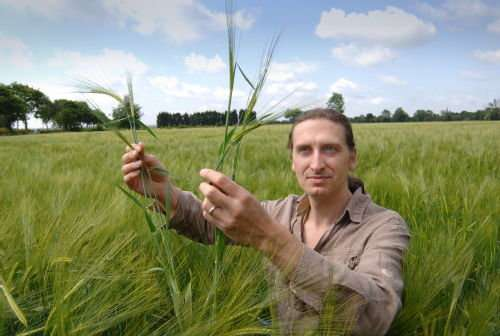 Crops evolved 10 millennia earlier than thought