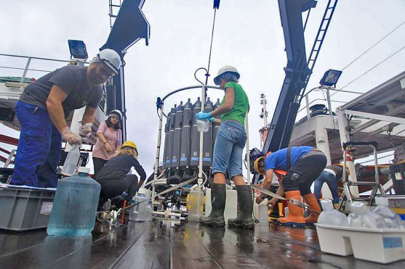 Dark ocean bacteria discovered to play large role in carbon capture