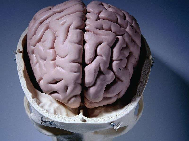 DBS safe but not beneficial in parkinson's dementia