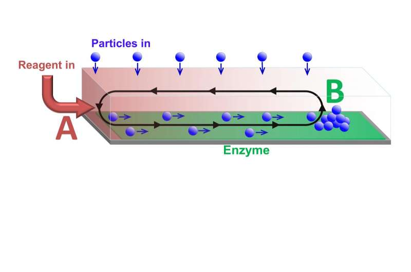 Developing a catalytic conveyor belt