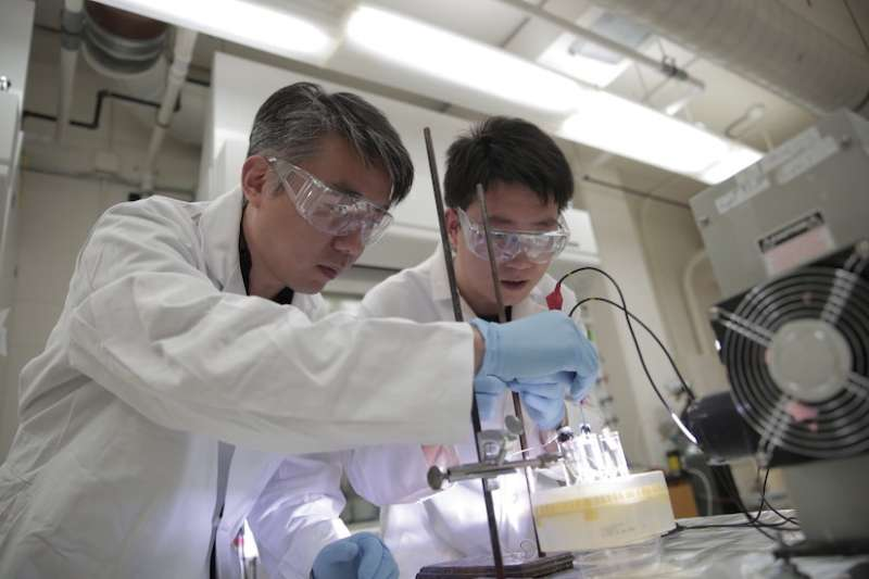 Discovery brings renewable fuel production one step closer to reality
