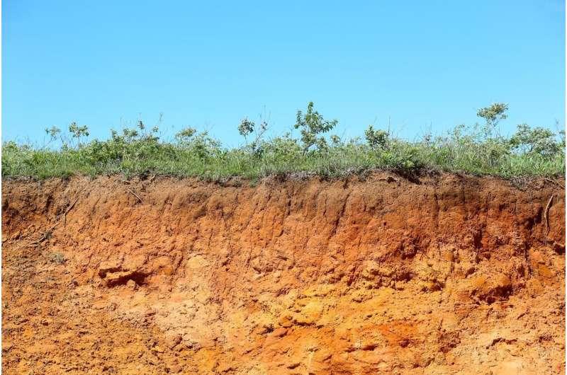 Disrupting sensitive soils could make climate change worse, researchers find