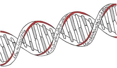 DNA-evidence needs statistical back-up