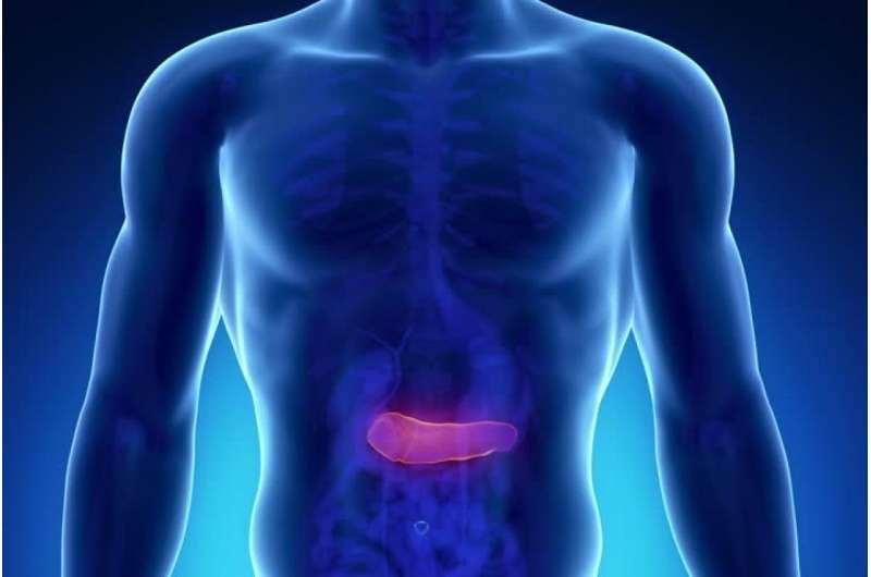 Do pancreatic cysts become cancerous?