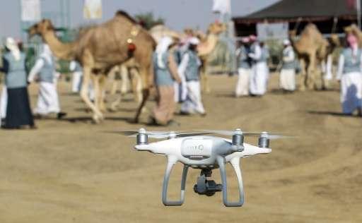 Drones halted air traffic at Dubai airport three times last year