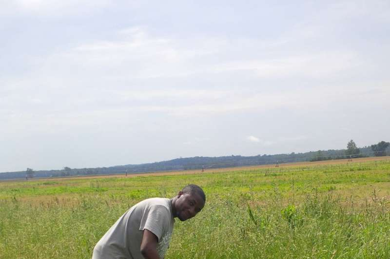Easing the soil's temperature