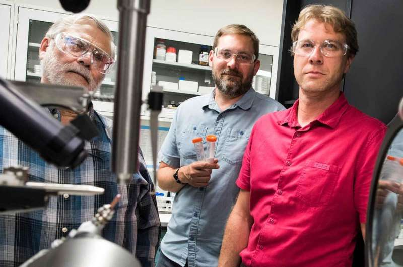 Enzyme's worth to biofuels shown in latest research