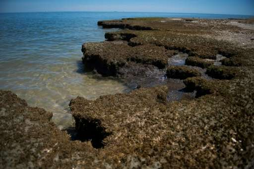 Erosion is threatening the existence of Tangier Island, Virginia, which has already lost two-thirds of its landmass since 1850