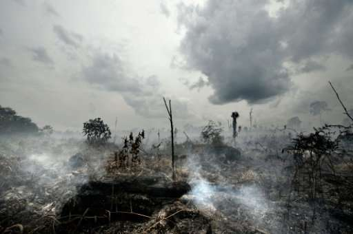 Fires by farmers on tropical peatland in Southeast Asia have caused widespread environmental damage and also pose a serious heal