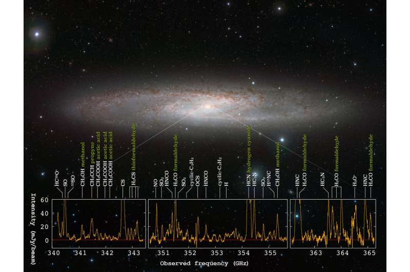 Forest of molecular signals in star forming galaxy