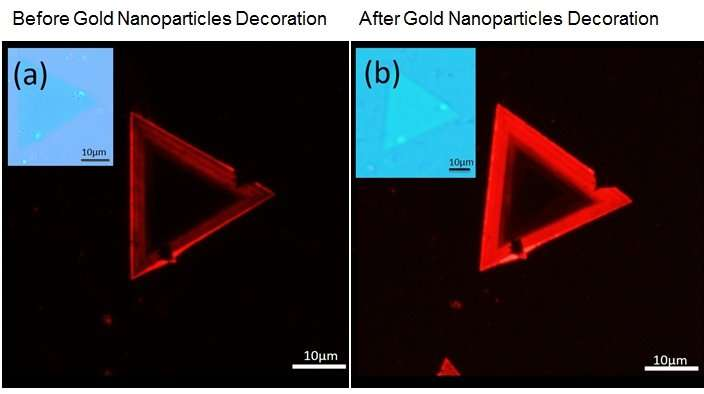 Gold nanoparticles enhance light emissions from tungsten disulphide