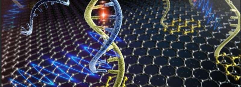 Graphene sensors detect HIV DNA