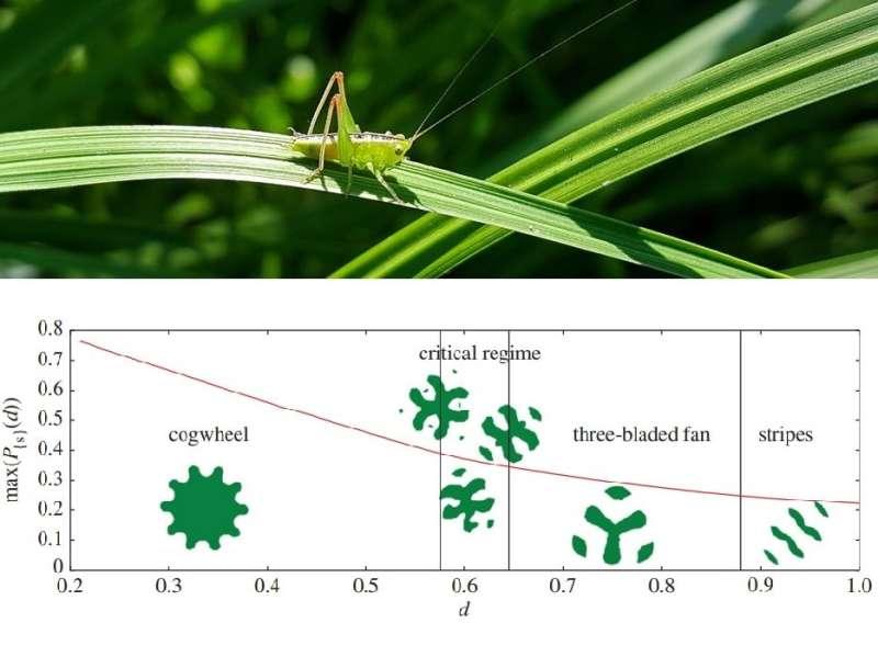 grasshopper problem