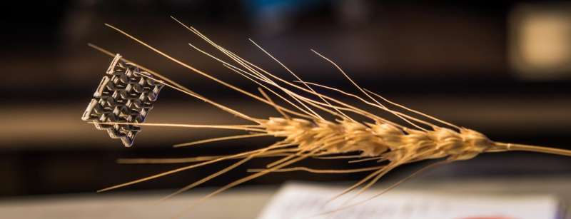 Guinness World Records names graphene aerogel as world's least dense 3-D printed structure