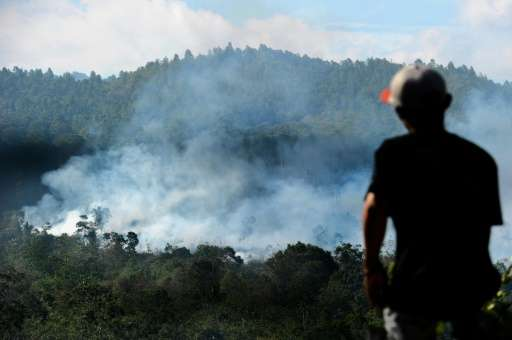 Haze is an annual problem caused by fires set in forests and on carbon-rich peatland in Indonesia to quickly and cheaply clear l