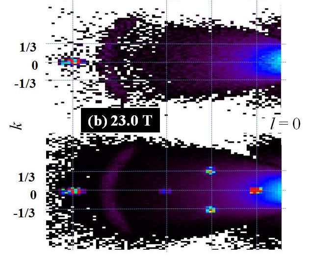 High field magnet at BER II: Insight into a hidden order