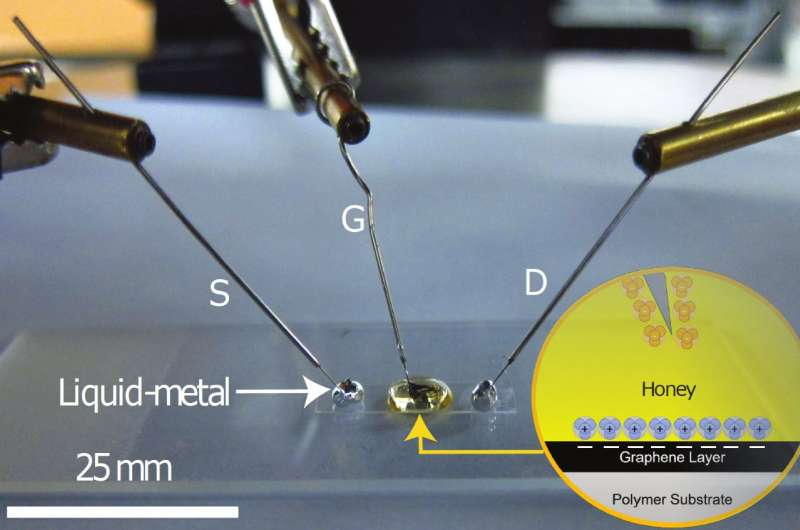 Honey: a cost-effective, non-toxic substitute for graphene manipulation