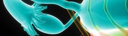 Hormone discovery marks breakthough in understanding fertility