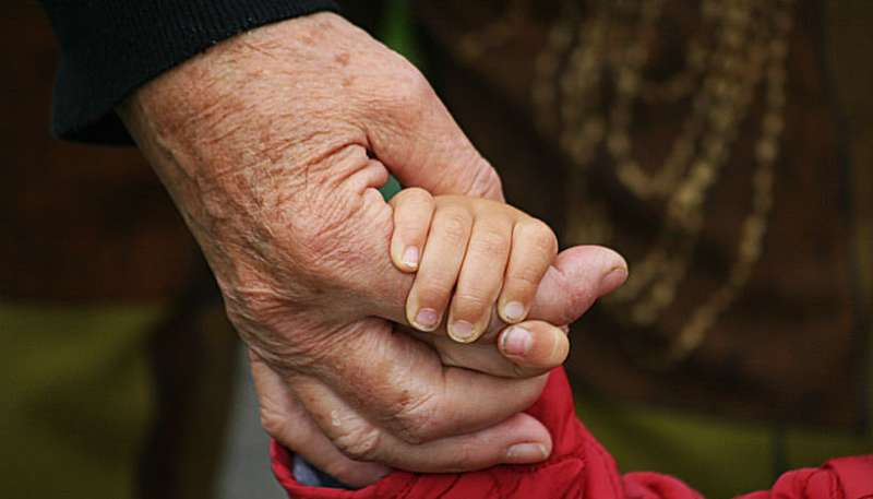 Households including in-laws have fewer kids
