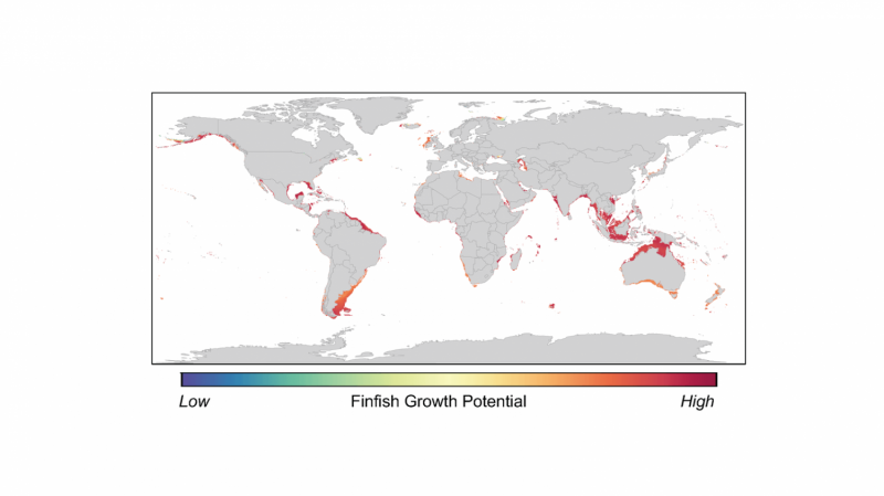 How a tiny portion of the world's oceans could meet global seafood demand