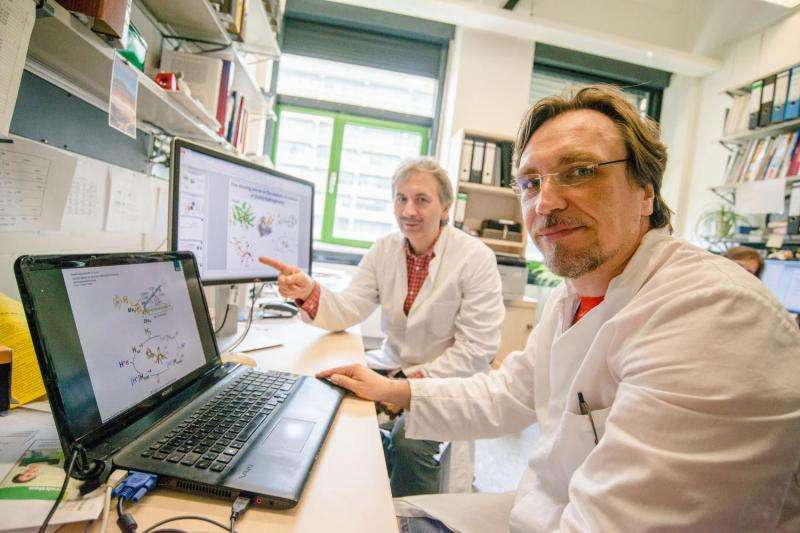 How enzymes produce hydrogen