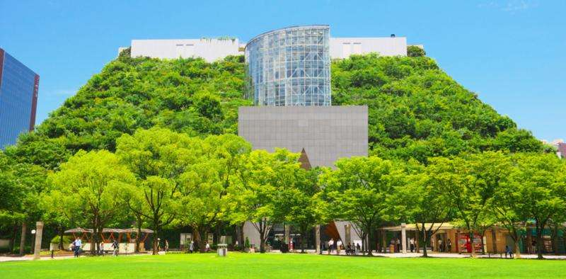 How green roofs can help cities sponge away excess stormwater