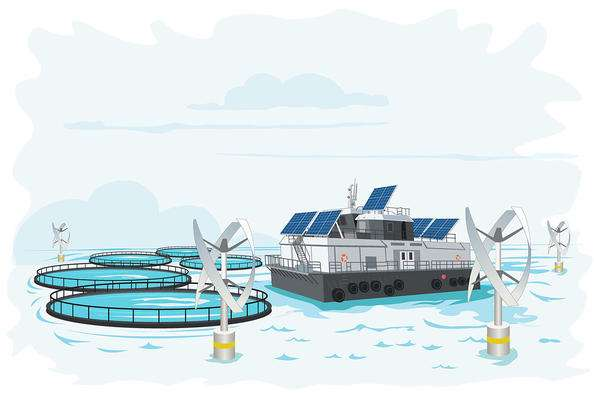 How to make the fish farming industry more climate friendly                                       A ne