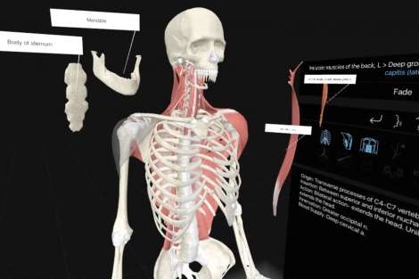 How VR is revolutionizing the way future doctors are learning about our bodies