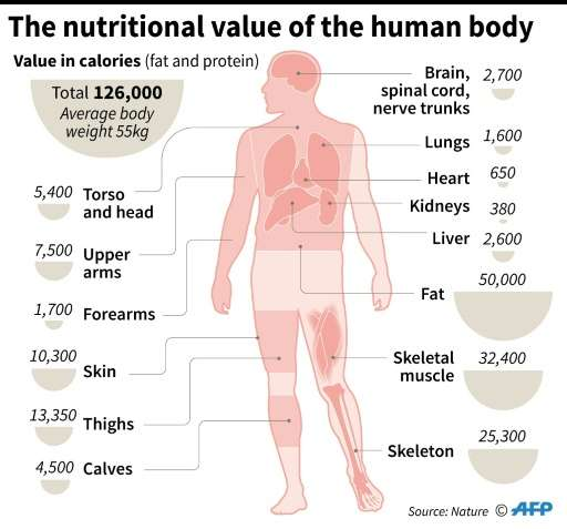 Humans are much less nutritional than a boar or a pig