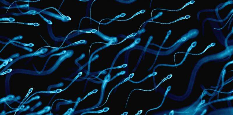 Infertility in men could point to more serious health problems later in life