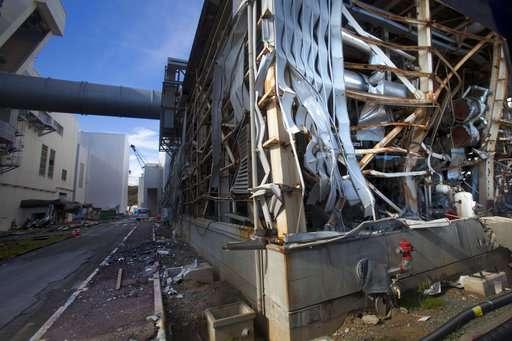 Japan commission supports nuclear power despite Fukushima