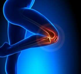 Key stem cells for repairing knee joints identified