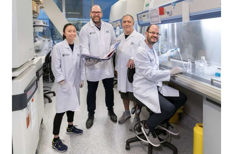 Key to immune system's memory revealed