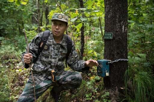 Liang Fengen, now a ranger at the Nuanquan River Forestry Centre in China, used to poach wild animals but now helps protect them