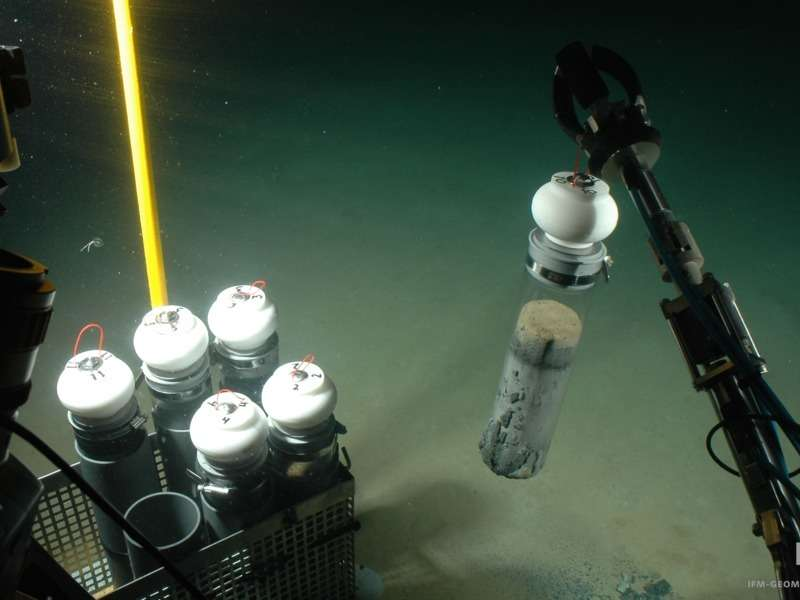 Low bottom-water oxygen leads to more organic matter ending up on the seafloor