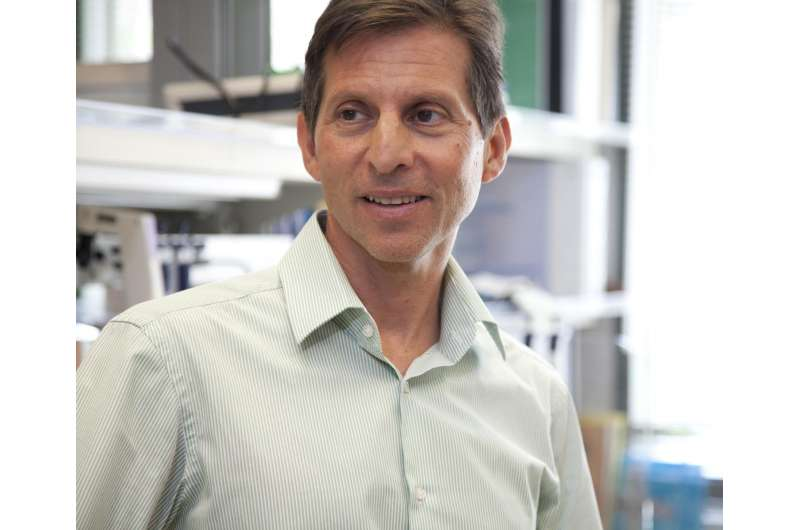 Ludwig research will shift how cancer diversity and resistance are understood and studied