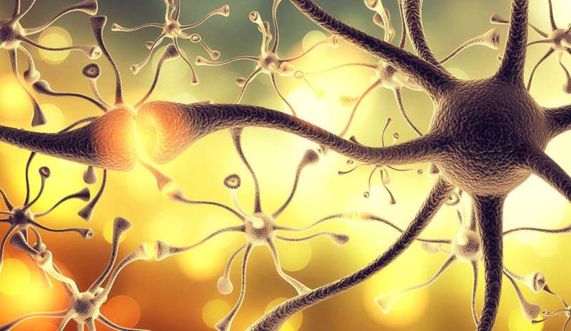 'Maturity' molecule helps adolescent brain grow up