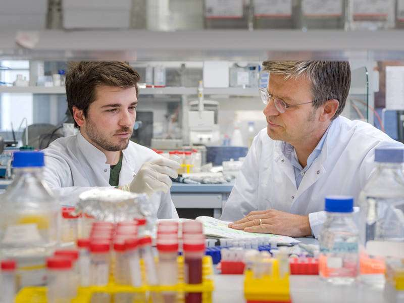 MicroRNA molecule can cause pathological changes in the heart