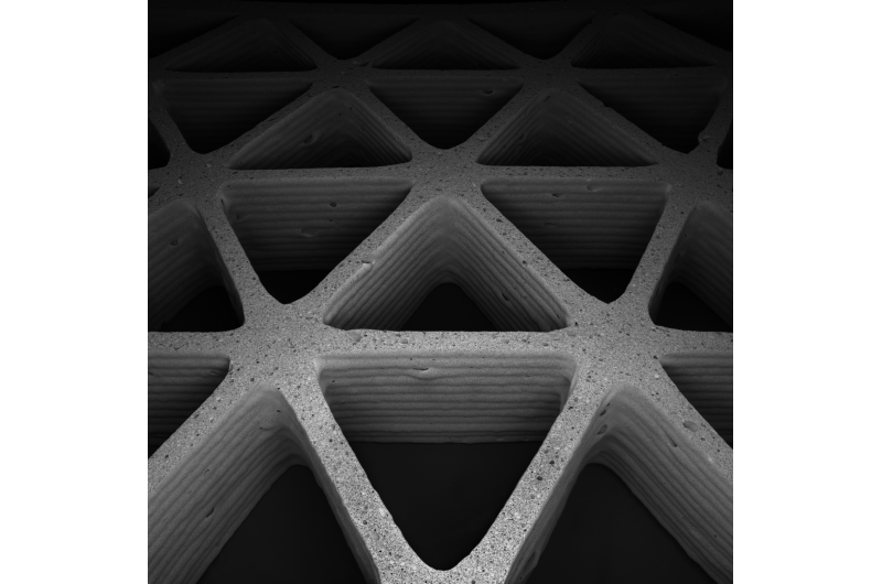 Mimicking nature's cellular architectures via 3-D printing