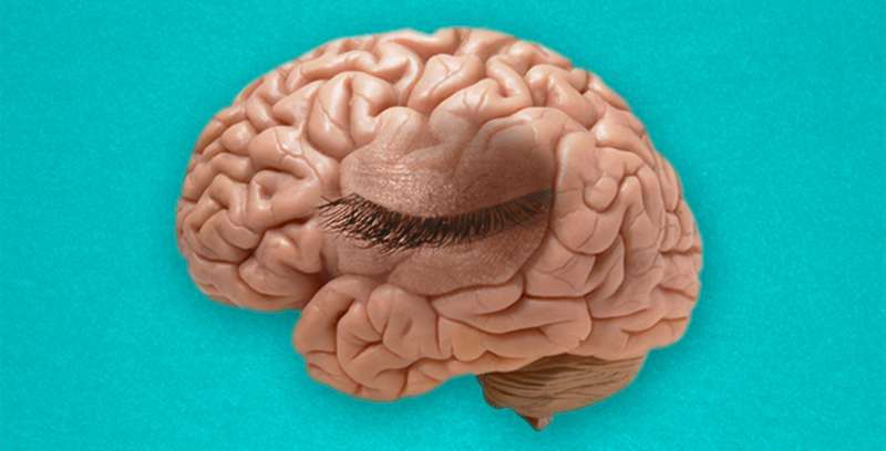 'Mind's eye blink' proves 'paying attention' is not just a figure of speech