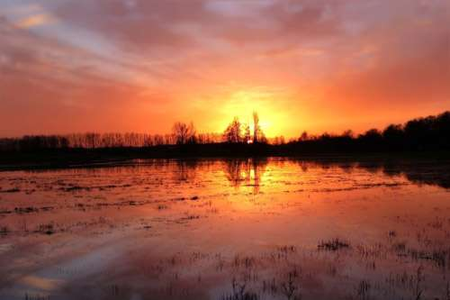 Natural measures to prevent floods valuable but not 'a silver bullet'
