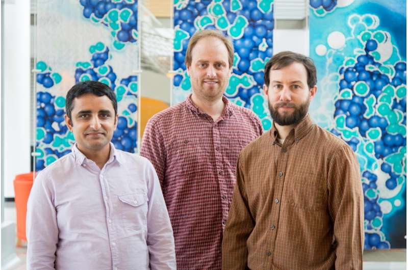Neutrons and a 'bit of gold' uncover new type of quantum phase transition