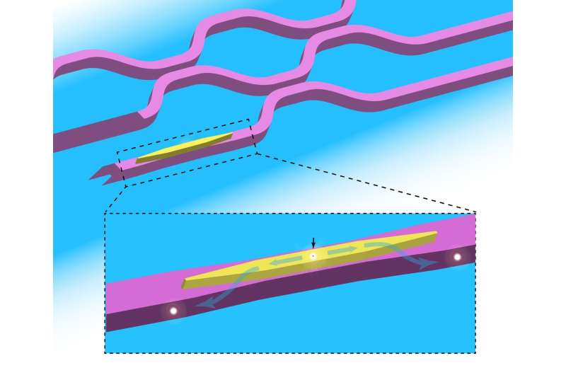 New architecture could prove essential for high-performance quantum photonic circuits