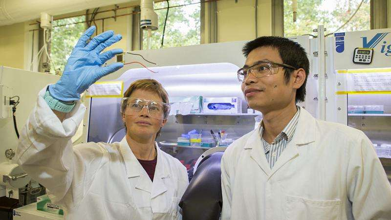 New efficiency record for low-cost solar cell