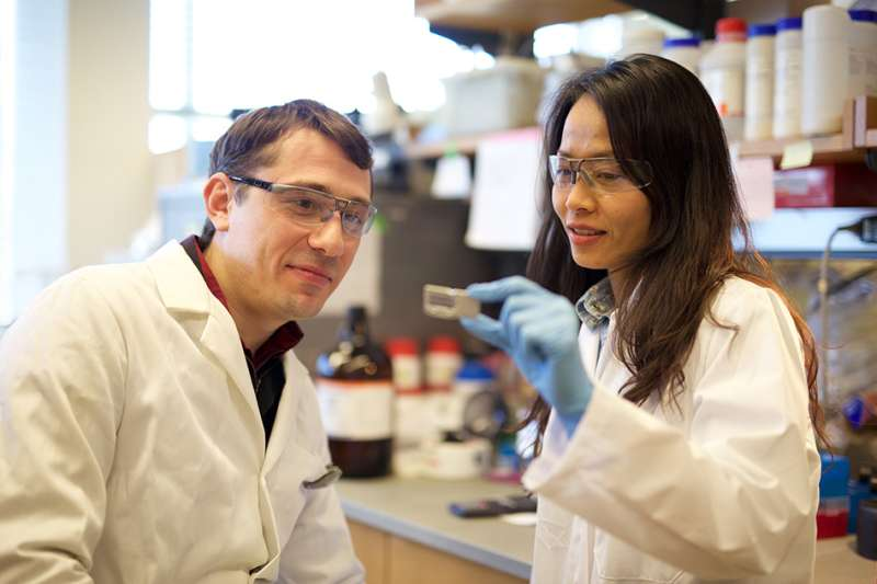 New finding could lead to earlier liver cancer diagnosis