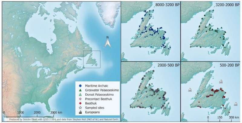 Newfoundland populated multiple times by distinct groups, DNA evidence shows