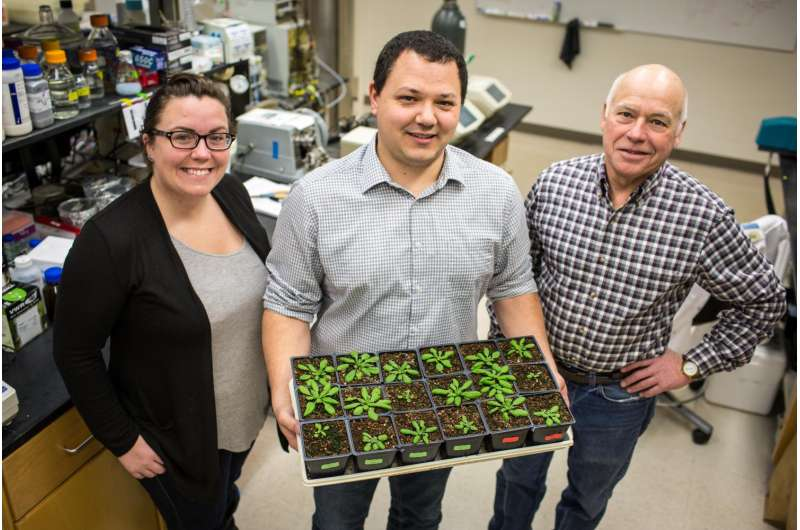 Newly characterized protein has potential to save US farmers millions annually