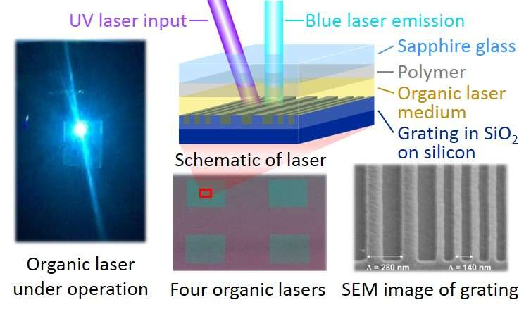 New organic lasers one step closer to reality