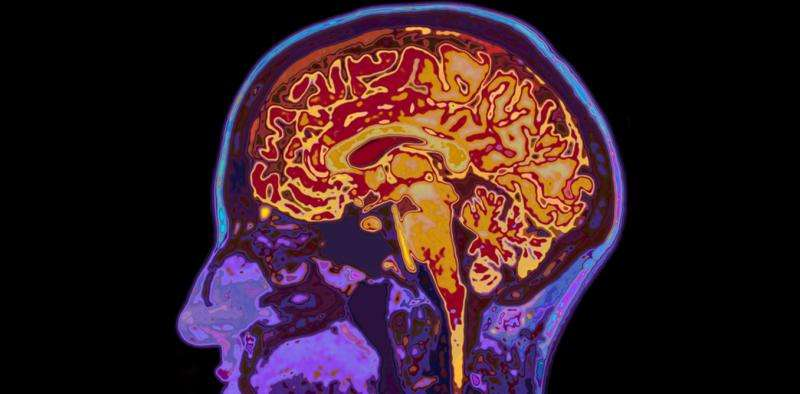 Nine things that can affect whether you get dementia – and what you can do about them